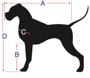 medidas_perro2